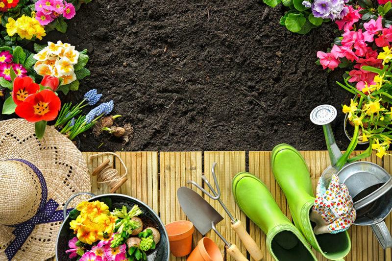 Idee per il giardino fai da te
